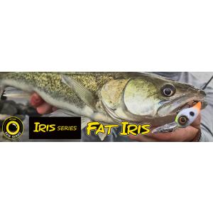 FAT IRIS 40 DR