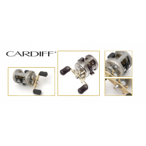 CARDIFF 401A