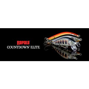 COUNTDOWN ELITE 55