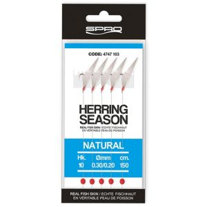SABIKI HERRING SEASON RIGS