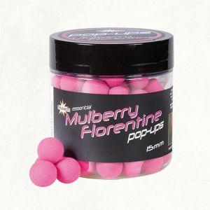 MULBERRY FLORENTINE FLUORO POP-UPS