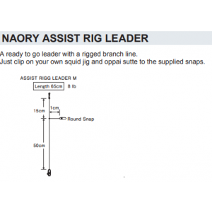 NAORY ASSIST RIG LEADER - M