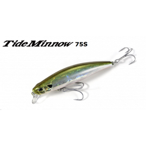 TIDE MINNOW 75S