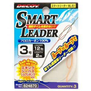 WL-51 SMART LEADER 2mt